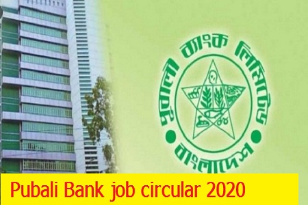 Pubali Bank Architect (in the rank of Senior Officer) job circular 2020